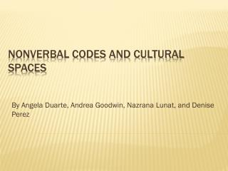 Nonverbal codes and cultural spaces