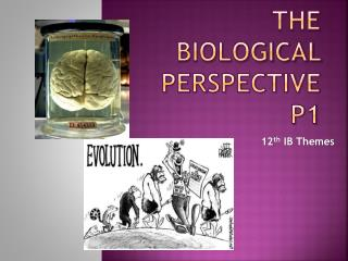 The Biological Perspective P1
