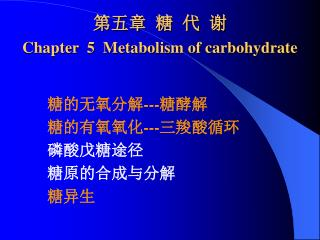 第五章 糖 代 谢 Chapter  5  Metabolism of carbohydrate
