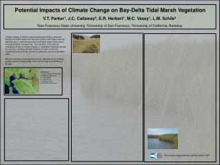 Potential Impacts of Climate Change on Bay-Delta Tidal Marsh Vegetation