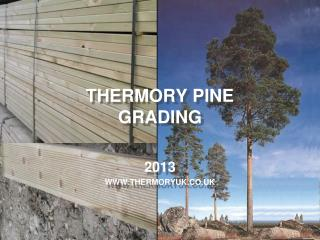 THERMORY PINE GRADING