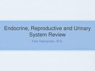 Endocrine, Reproductive and Urinary System Review