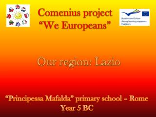"Comenius project ""We  Europeans """
