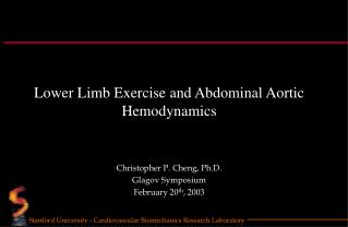 Lower Limb Exercise and Abdominal Aortic Hemodynamics