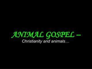 ANIMAL GOSPEL –