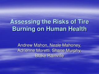 Assessing the Risks of Tire Burning on Human Health