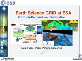 Earth Science GRID at ESA  GRID on-Demand, e-collaboration…