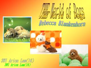 THE World of Dogs
