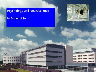 Psychology and Neuroscience in Maastricht