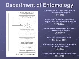 Department of Entomology