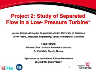 Project 2: Study of Separated Flow  in a  Low- Pressure Turbine*