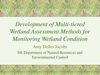 Development of Multi-tiered Wetland Assessment Methods for Monitoring Wetland Condition