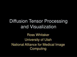 Diffusion Tensor Processing and Visualization