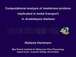Computational analysis of membrane proteins implicated in metal transport in  Arabidopsis thaliana