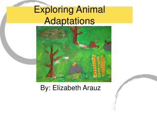 Exploring Animal Adaptations