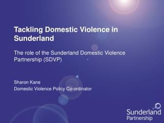 Tackling Domestic Violence in Sunderland