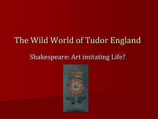 The Wild World of Tudor England