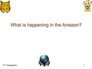 What is happening in the Amazon?