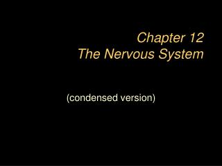 Chapter 12  The Nervous System