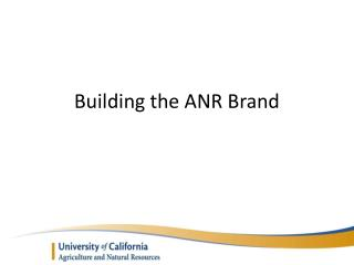 Building the ANR Brand