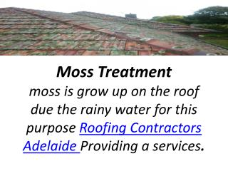 moss treatment adelaide