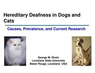 Hereditary Deafness in Dogs and Cats