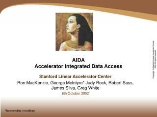 AIDA Accelerator Integrated Data Access