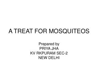 A TREAT FOR MOSQUITEOS