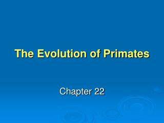 The Evolution of Primates