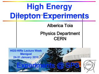 High Energy                       Dilepton Experiments