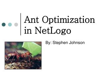 Ant Optimization in NetLogo