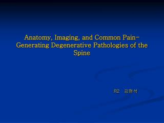Anatomy, Imaging, and Common Pain-Generating Degenerative Pathologies of the Spine