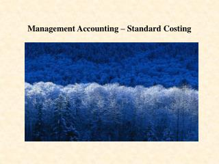 Management Accounting – Standard Costing