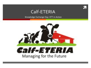 Calf-ETERIA