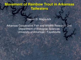 Movement of Rainbow Trout in Arkansas Tailwaters
