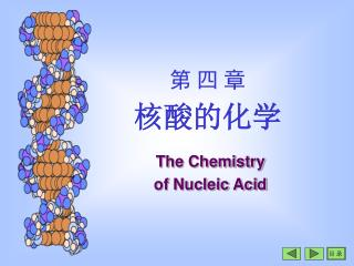 The Chemistry  of Nucleic Acid