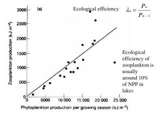 Ecological efficiency of zooplankton is  usually around 10% of NPP in lakes