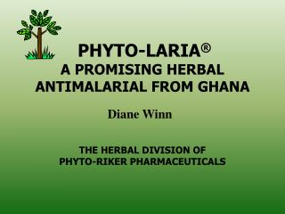 PHYTO-LARIA    A PROMISING HERBAL  ANTIMALARIAL FROM GHANA     THE HERBAL DIVISION OF  PHYTO-RIKER PHARMACEUTICALS
