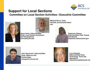 Support for Local Sections