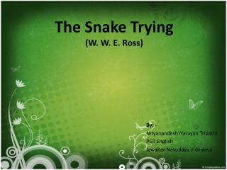 The Snake Trying (W. W. E. Ross)