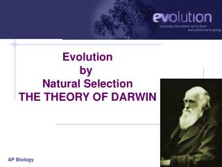 Evolution by  Natural Selection THE THEORY OF DARWIN