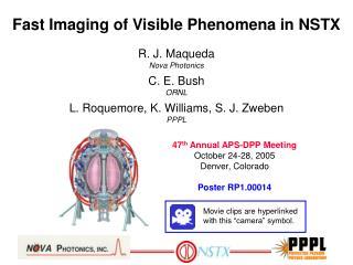 Fast Imaging of Visible Phenomena in NSTX
