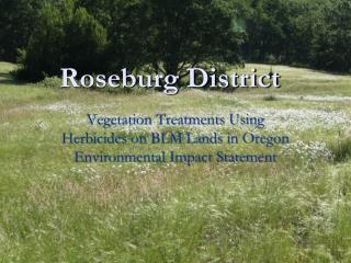 Roseburg District
