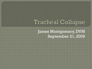 Tracheal Collapse