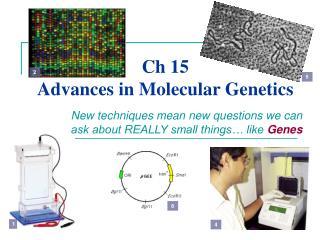 Ch 15 Advances in Molecular Genetics