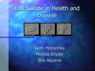 Cell Suicide in Health and Disease