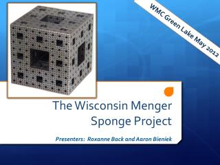 The Wisconsin Menger Sponge Project