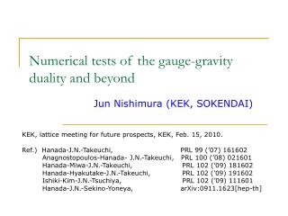 Numerical tests of the gauge-gravity duality and beyond