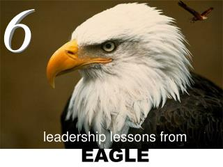 leadership lessons from EAGLE