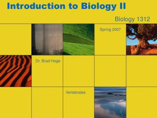 Introduction to Biology II